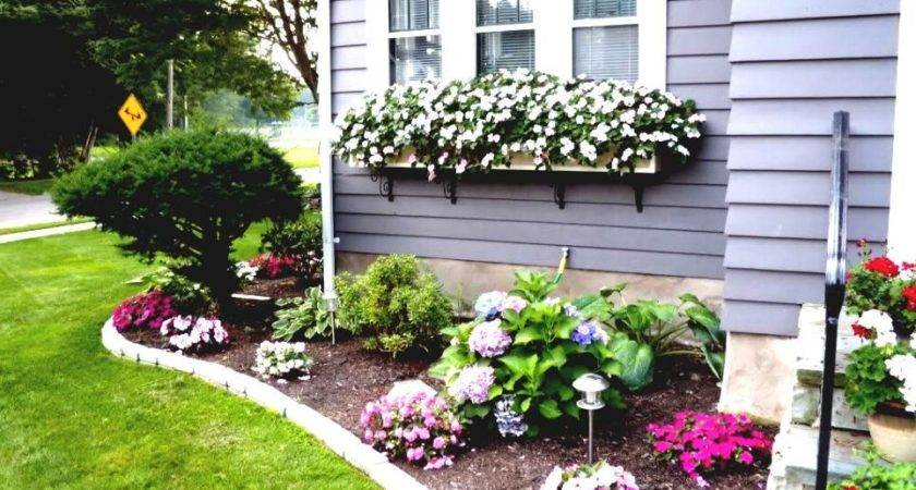 Flower Bed Ideas Front House Back Yard