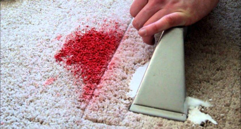 Fresh Paint Your Carpets Here Can