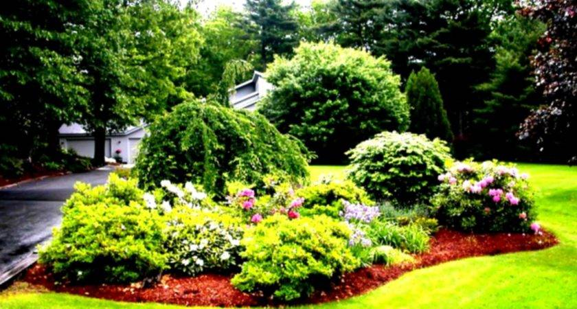 Front Yard Landscape Ideas Cape Codsimple Landscaping
