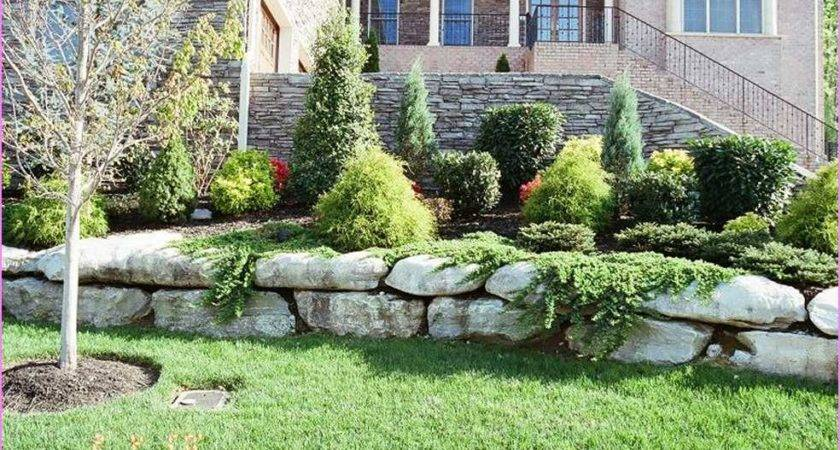 Front Yard Landscaping Ideas Home Design Exterior