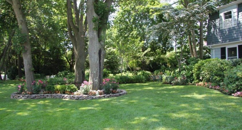 Garden Ideas Around Trees Modern Home Exteriors