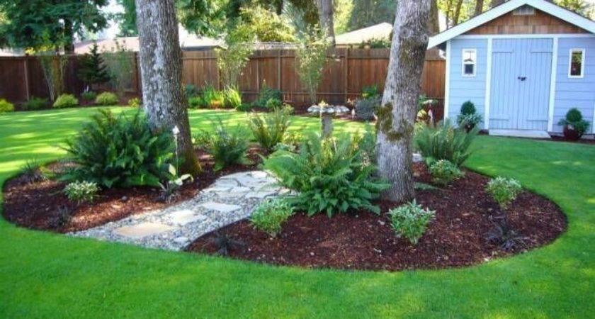 Gardening Under Old Oak Trees Urban Gardener