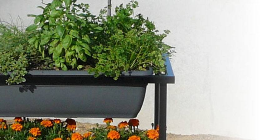Herbs Cart Your Kitchen Garden Wheels Home