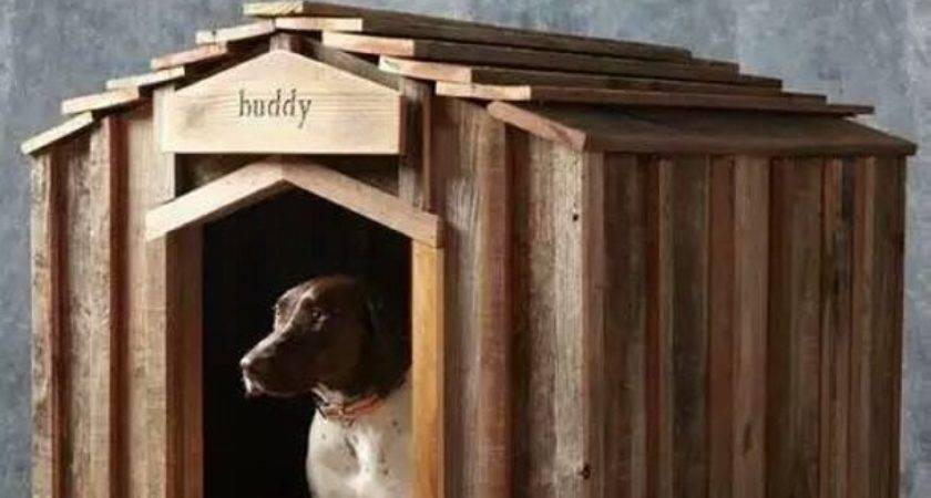 Houses Dogs Made Pallets Pallet Ideas Recycled