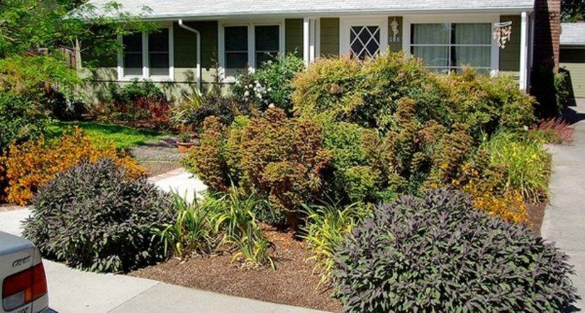 Ideas Front Yard Landscaping Without Grass
