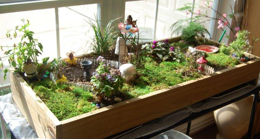 Indoor Fairy Garden Sturtz Copeland Greenhouses