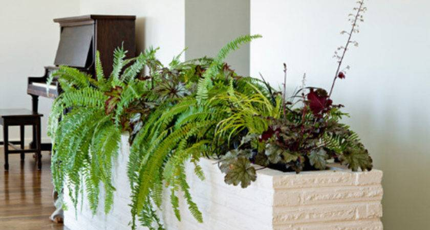 Indoor Garden Ideas Your Source Architecture