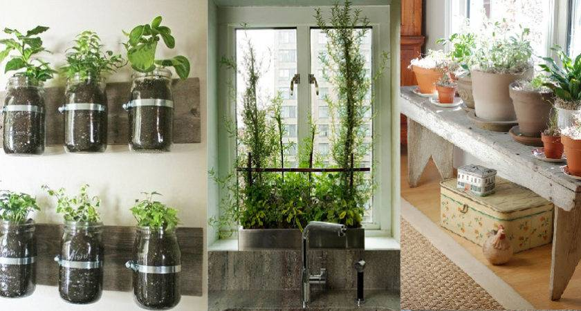 Indoor Gardening Ideas Urban Cultivator