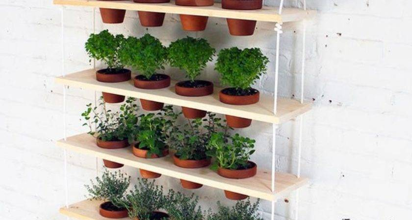 Indoor Herb Garden Ideas Homesteading Gardening Tips