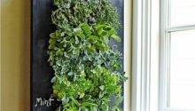 Indoor Herb Garden Popsugar Home