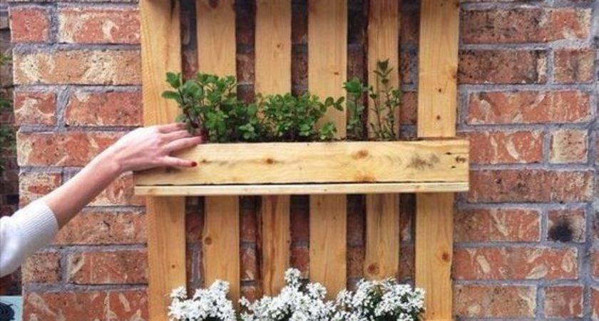 Ingenious Wooden Pallet Shelves Ideas Small House Decor