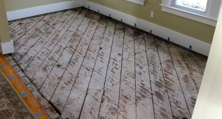 Installing Wood Floors Uncommon Slice Suburbia