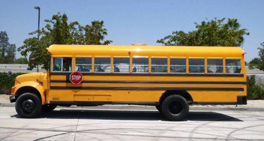 International Blue Bird School Bus