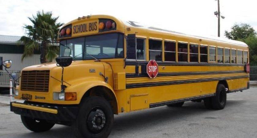 International Bluebird School Bus Auto