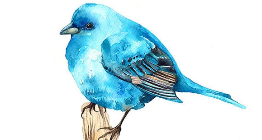 Items Similar Bluebird Watercolor Illustration Print