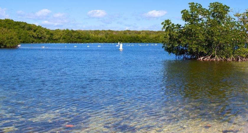John Pennekamp Coral Reef State Park Photos