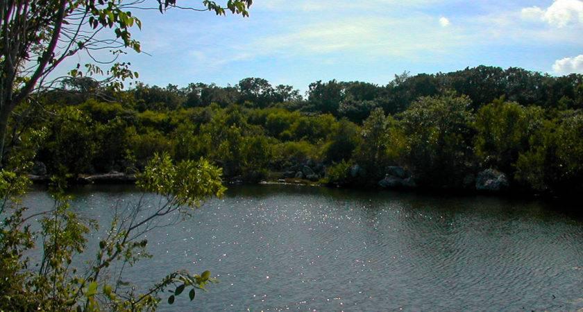 Key Largo Hammock Nature Trail Florida Hikes