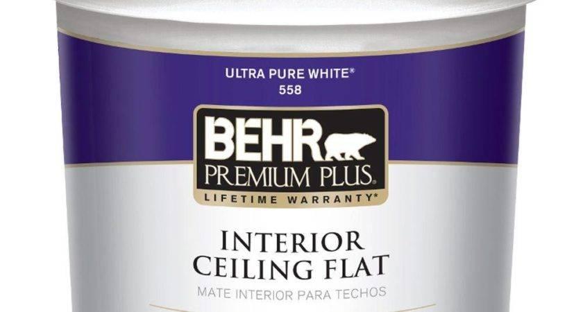 Kilz White Flat Gal Interior Stainblocking Ceiling