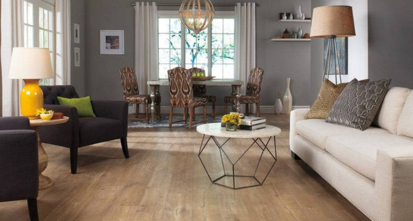 Laminate Flooring Modern Living Room Other Metro