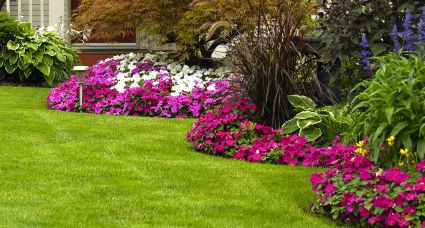 Landscape Design Installation Classic Lawn