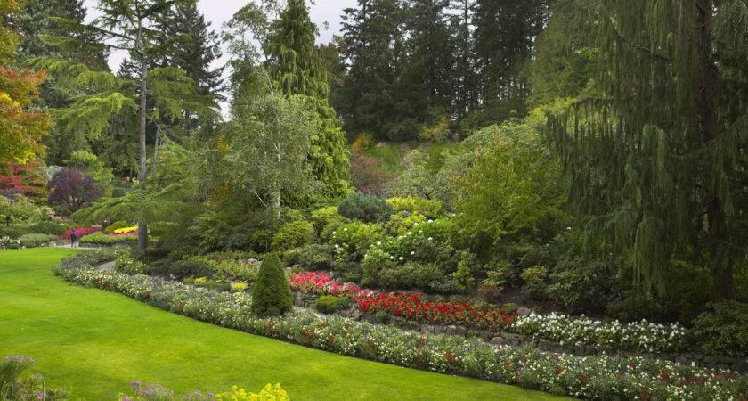 Landscape Design Software Landscaping Ideas