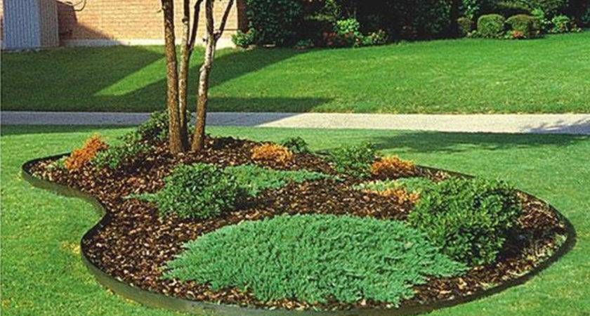 Landscape Edging Ideas Around Trees Inexpensive