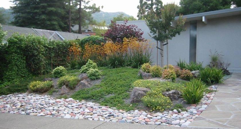 Landscape Low Maintenance Landscaping Ideas Rock Gardens