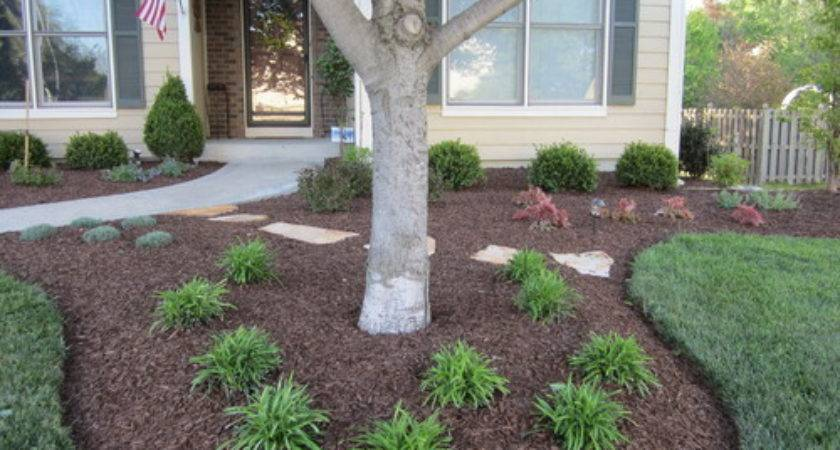 Landscaping Around Tree Beautiful Ideas Decorating