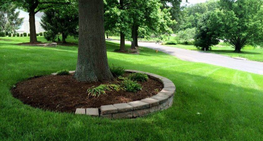 Landscaping Around Trees Newest Home Lansdscaping Ideas