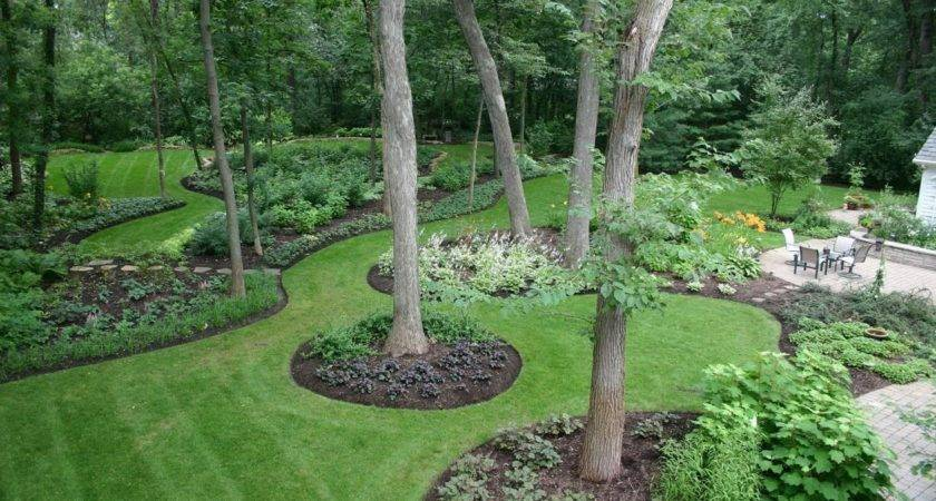 Landscaping Backyard Corner Ideas Landscape