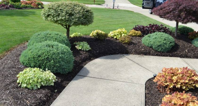 Landscaping Ideas Photos