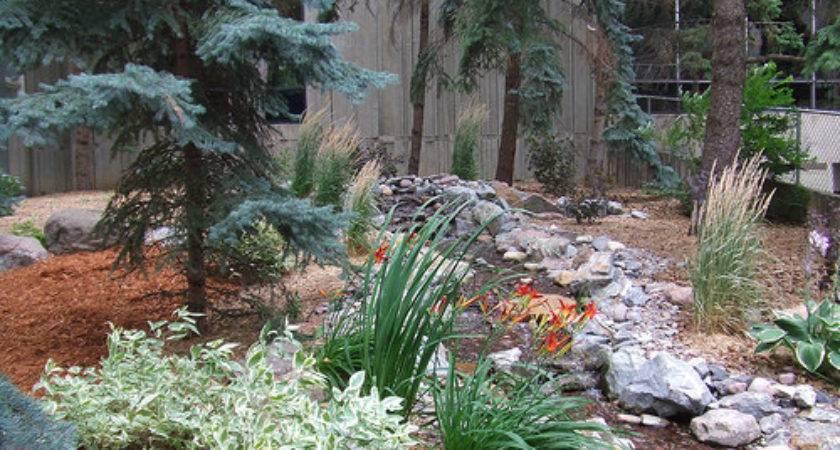 Landscaping Ideas Small Yards Yard
