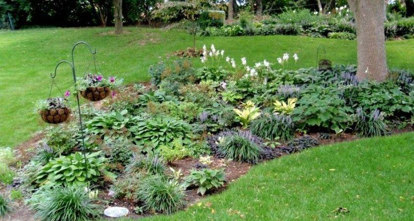 Landscaping Landscape Ideas Around Trees Dma Homes