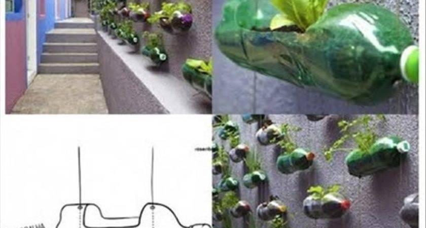 Liter Soda Bottle Wall Garden