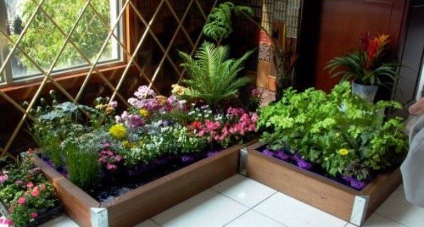 Make Indoor Garden Freshinterior