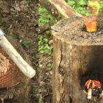 Make Your Own Wooden Rocket Stove Brilliant Diy