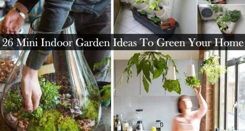 Mini Indoor Garden Ideas Green Your Home Amazing