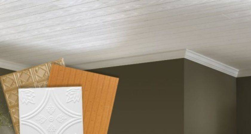 Mobile Home Ceiling Panels Photos Bestofhouse
