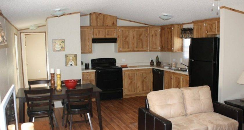 Mobile Home Decorating Ideas Single Wide Best