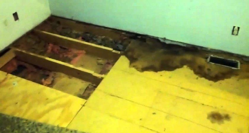 Mobile Home Floor Repair Nasty Job Youtube