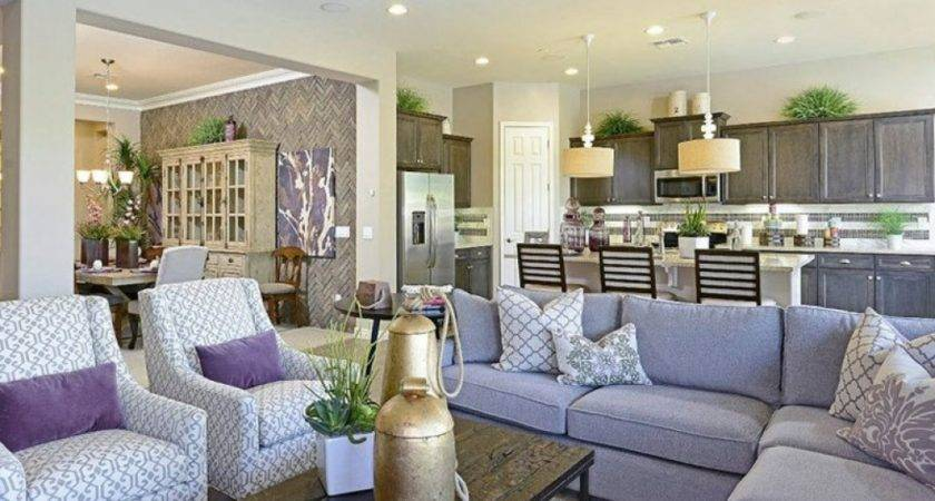 Model Home Living Room Ideas Insurserviceonline