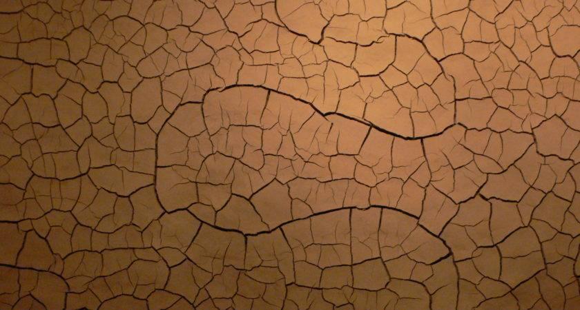 Mud Wall Usa Trufflepig