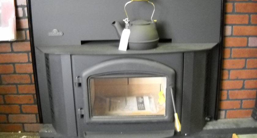 Napoleon Epi Wood Burning Fireplace Insert