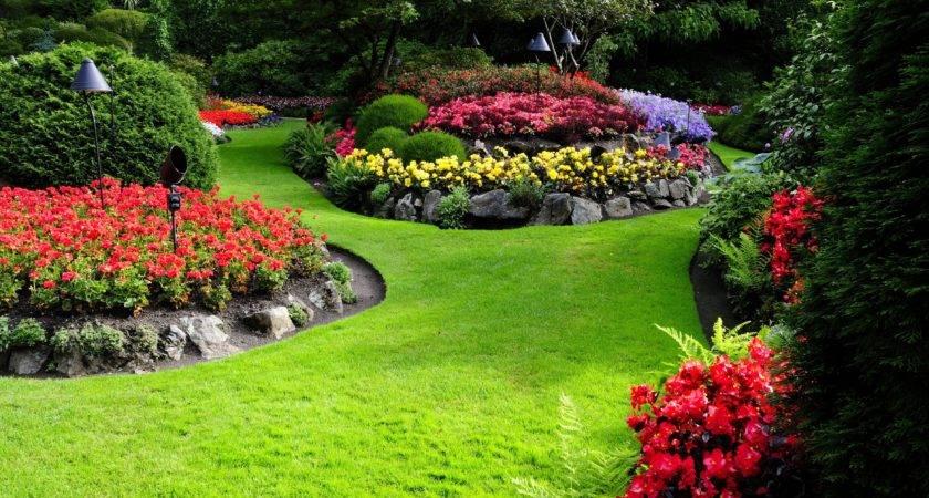 Nature Flowers Garden Landscape