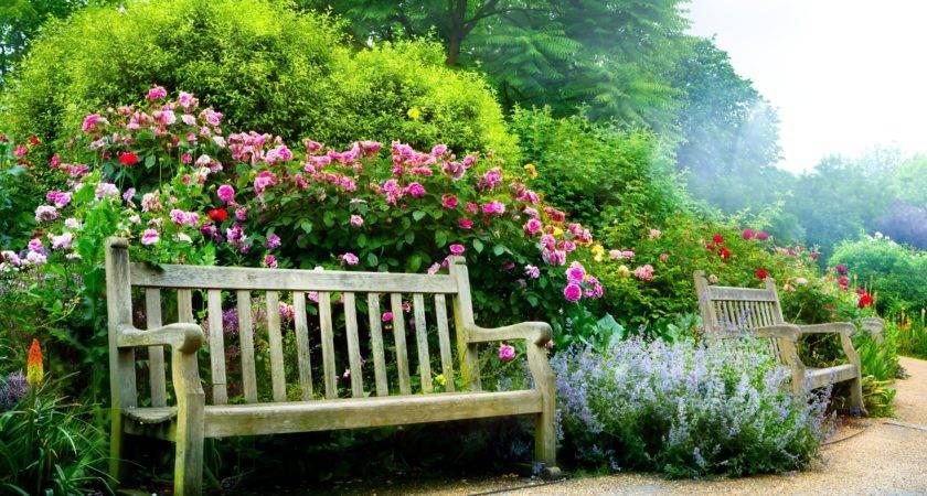 Nature Plants Flowers Landscaping Flower Garden