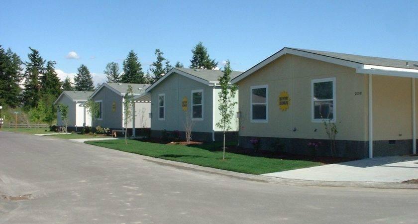 Need Skirting Mobile Homes Duraskirt