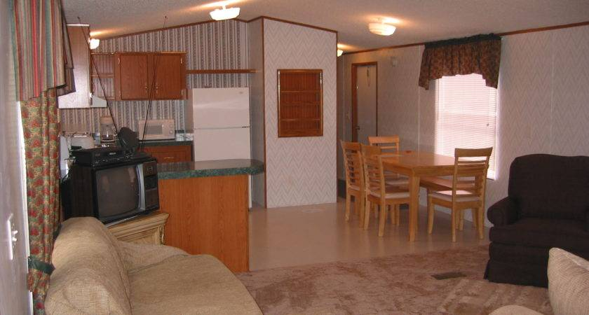 Nice Mobile Home Decorating Living Room