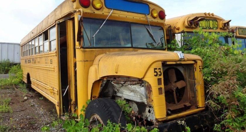 Old School Buses
