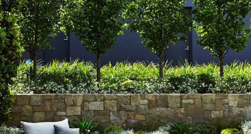 Outdoor Residential Project Mosman Sydney Best Privacy