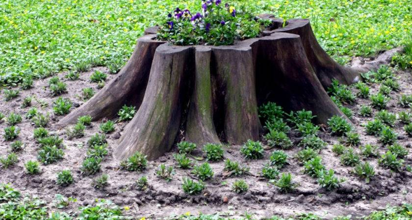 Outdoor Tree Stump Decorating Ideas Make